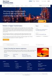 dicitas-consulting-wordpress-website - Nicetoclick
