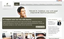 feriduni-webdesign-thumb - Nicetoclick