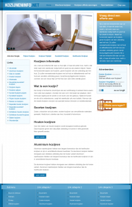 kozijneninfo-wordpress-website - Nicetoclick