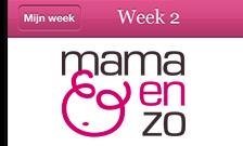 mamaenzo-appdesign-thumb - Nicetoclick