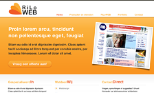 riloweb-webdesign-thumb - Nicetoclick
