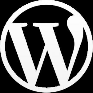 Wordpress onderhoudsabonnement