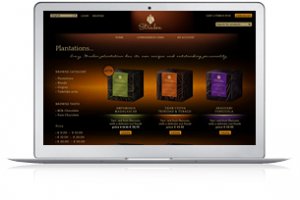 wordpress-website-maatwerk - Nicetoclick