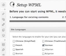 wpml-meertalige-website - Nicetoclick